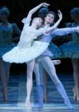 Il Balletto del Bolshoi: La Bella Addormentata