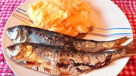 pesci lotto sito di incontri di pesce