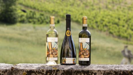 Tutto Il Gavi A Genova 2019 Degustazione Di Vini E Workshop